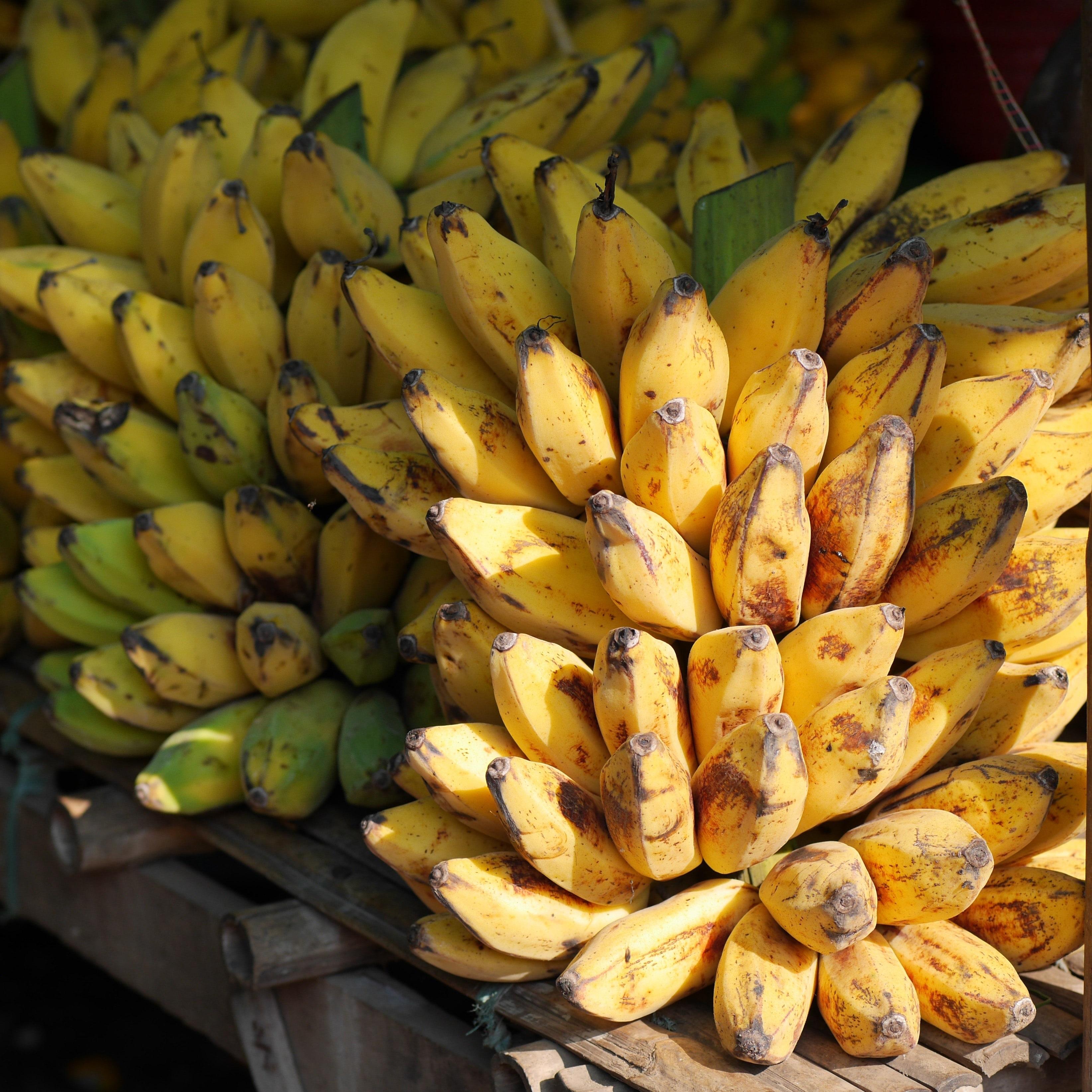 Banane poingo