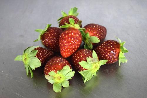 Délice de perle du Japon au lait de coco et aux fraises