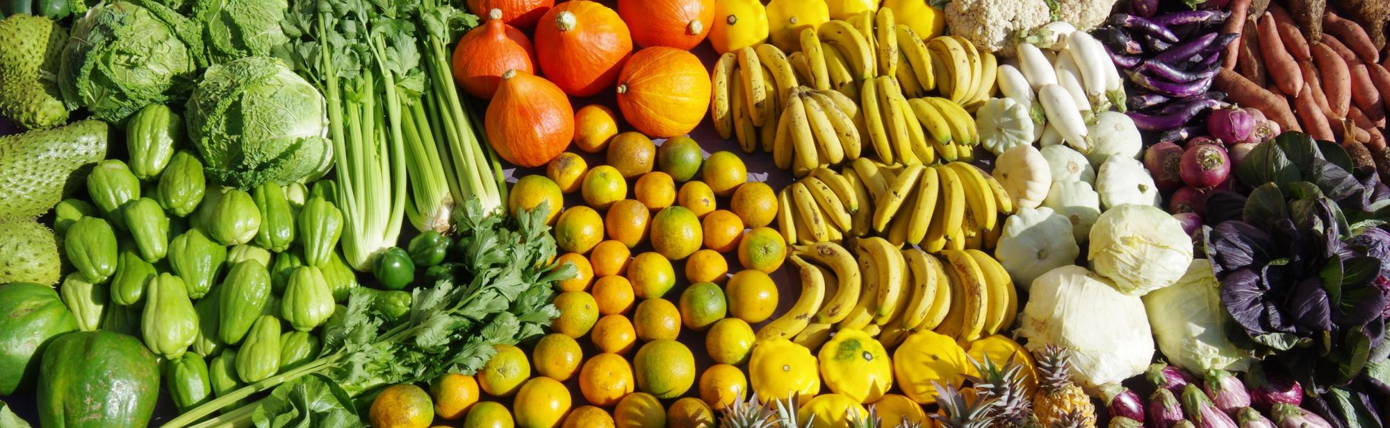 Concours d'étals de fruits et légumes 2019